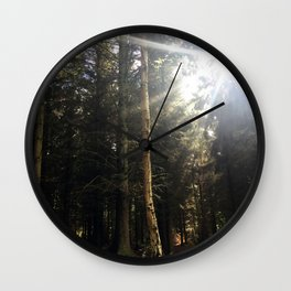 Sun Through Trees. Rushemere Country Park, Bedfordshire UK Wall Clock
