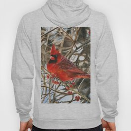 Winter Cardinal by Teresa Thompson Hoody