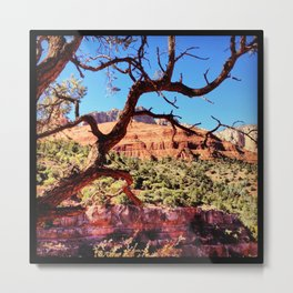 Beyond The Tree Metal Print