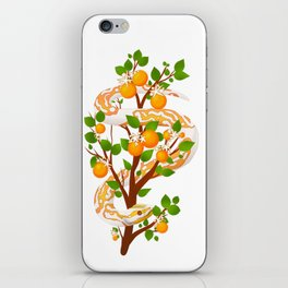 Dreamsicle Orange iPhone Skin
