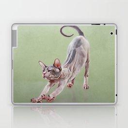 Sphynx kitten Laptop & iPad Skin