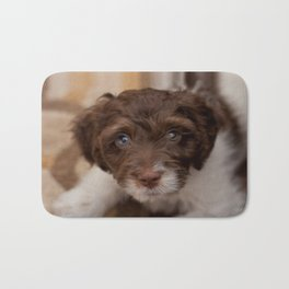 Study in Brown and White - Spaniel Dog Bath Mat