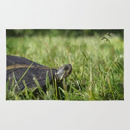 Painted Turtle Rug