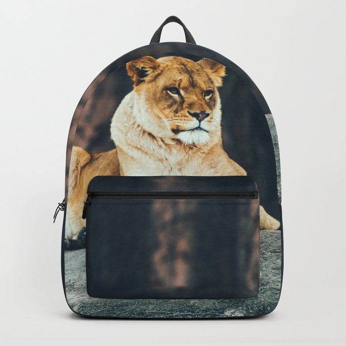 Lion on the rock Backpack