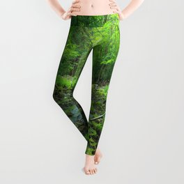 Rocky Forest Creek Leggings