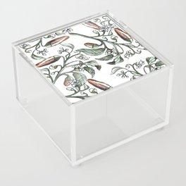 Hot Peppers Botanical Drawing Acrylic Box