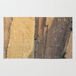 Rock Climbing At Smith Rock, No. 2 Rug