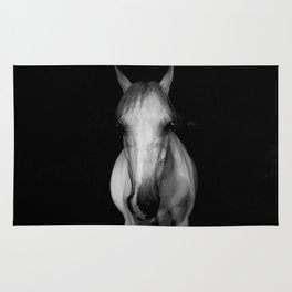 Horse in the Dark Rug