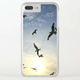 Seagulls at Sunset Clear iPhone Case