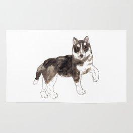 Miya the Husky Rug