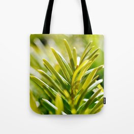 Yew Tree - New Growth Tote Bag