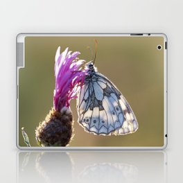 MARBLED WHITE BUTTERFLY ON KNAPWEED Laptop & iPad Skin