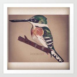 Green Kingfisher Art Print