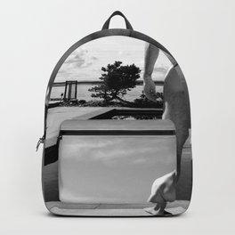 Swim Naked Backpack