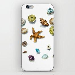 Beach Treasure iPhone Skin