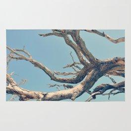 Driftwood Ladder Rug