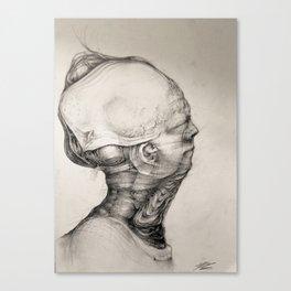 TheTurtle Canvas Print