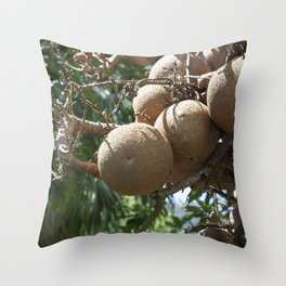 Cannonball Fruit Throw Pillow