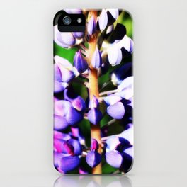 Lupine close up iPhone Case