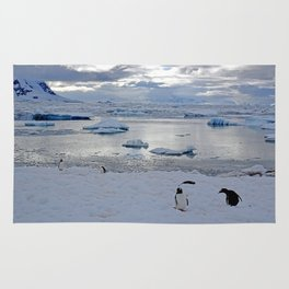 Gentoo Penguins on Ice Rug