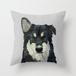 Bjorn - Malamute Samoyed Husky Mix Throw Pillow