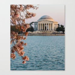 Cherry Blossoms at the Jefferson Canvas Print