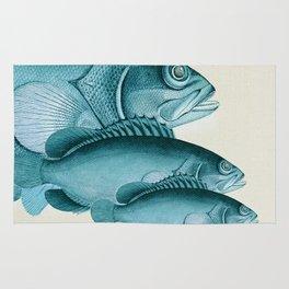 Fish Classic Designs 4 Rug
