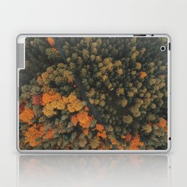 Autumn Passage Laptop & iPad Skin