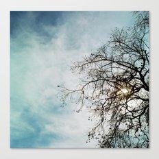 Blue Sky and Tree Canvas Print
