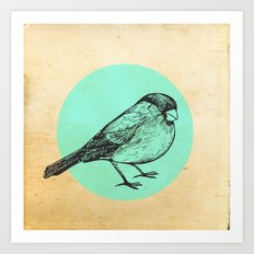 Spotted bird Art Print
