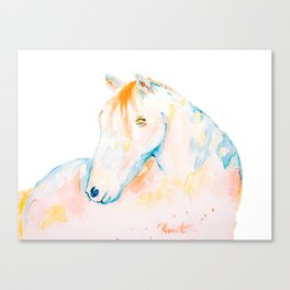 Dreaming of Color Canvas Print