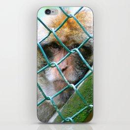 Monkey Cage iPhone Skin