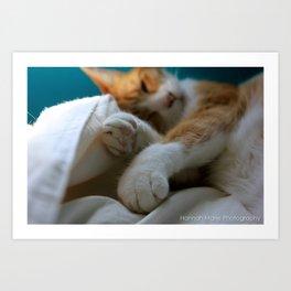 Sleeping Luna Art Print