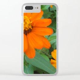 Orange Echinacea Sombrero Coneflowers Clear iPhone Case