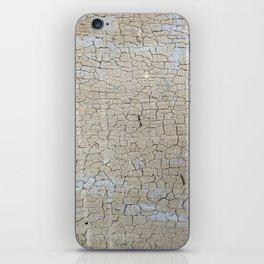 Authentic Craquelure iPhone Skin