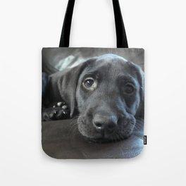 Labrador Puppy Tote Bag