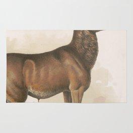 Vintage Illustration of a Round Horned Elk (1872) Rug