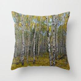 Trembling Aspen's in the Fall, Jasper National Park Throw Pillow