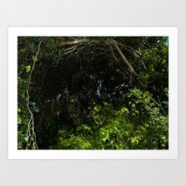 green secret Art Print