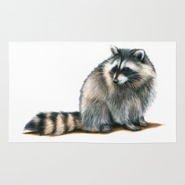 Raccoon Rug