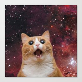 scaredy cat in space Canvas Print