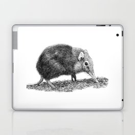 Black Shrew Laptop & iPad Skin
