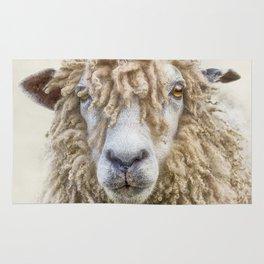 Leicester Longwool Sheep Rug