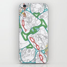 Emerald Reflection iPhone Skin