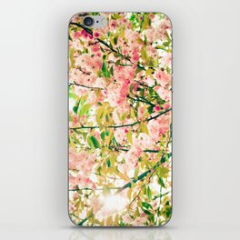 Spring Blossoms (1) iPhone Skin