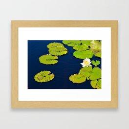 Dark Blue Pond by Teresa Thompson Framed Art Print