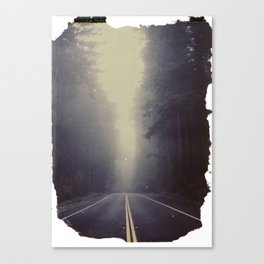 Long Road, Redwoods National Park. Instant Film Canvas Print