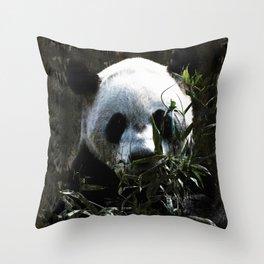 Chinese Giant Panda Bear Throw Pillow