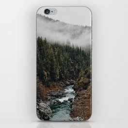 Landscape #photography iPhone Skin