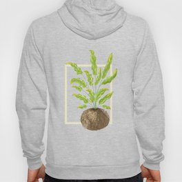 Bluestar Fern Illustration Hoody